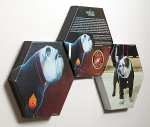 USMC Mascot Hexagonal Canvas Set of 3